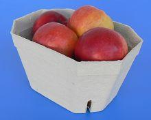 EKO vanička papírová 1kg 1.jpg